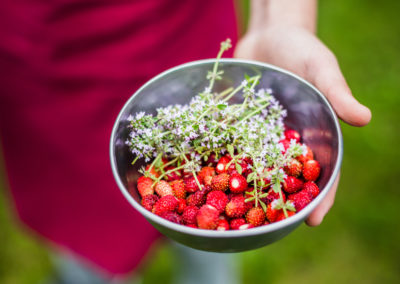 Hotel-Aigue-marine-2019-Cuisine-Cueillette-fraises-des-bois-et-Thym-Minis-144-400x284