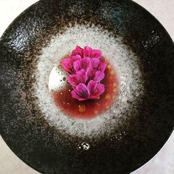 Aigue-Marine_thon-rouge-tomate-bio-mûres